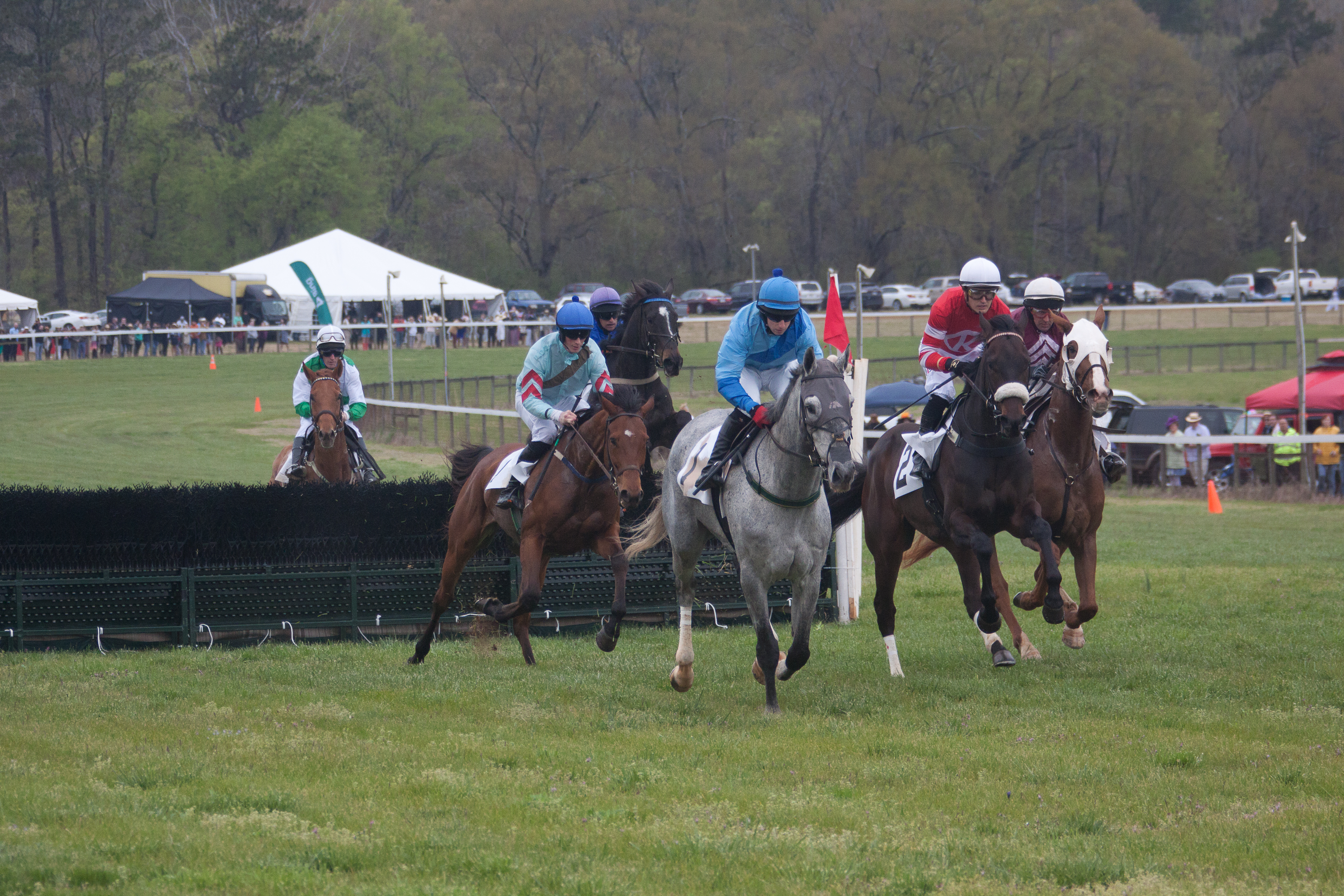 Georgia Steeplechase First Event